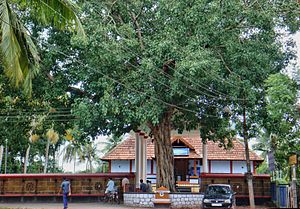 Irinjalakuda - Payammal Shathrugna Temple