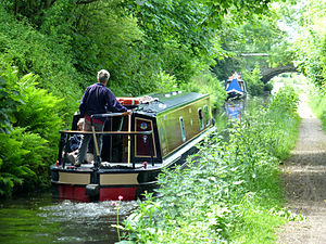 Staffordshire and Worcestershire Canal - Image: Pendeford Rockin'