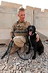 Pennsylvania Marine Deploys as Dog Handler 110406-M-PE262-005.jpg