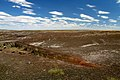 Petrified Forest (6557170019).jpg
