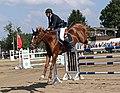 Pferdesportveranstaltung in Seifersdorf (Jahnsdorf) ..2H1A8785WI.jpg