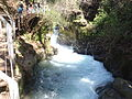 PikiWiki Israel 35720 Banias River.JPG