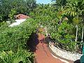 Pinecrest Gardens FL park concession down01.jpg