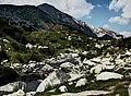Pirin-2014-Hvojnati-Vihren03.jpg