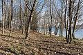 Poertschach Halbinselpromenade Landspitz Naturpark Buchenhain 14032016 0934.jpg