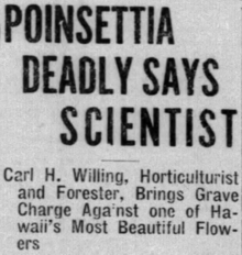 "A newspaper clipping; the headline says ""Poinsettia Deadly Says Scientist"", while the subtitle says ""Carl H. Willing"", Horticulturalist and Forester, Brings Grave Charge Against one of Hawaii's Most Beautiful Flowers"""