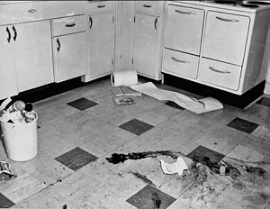 Disappearance of Joan Risch - Image: Police photograph of Risch kitchen