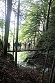 Pont au dessus de la grotte de Motiers - img 39783.jpg