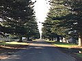 Port Fairy VIC 3284, Australia - panoramio (1).jpg