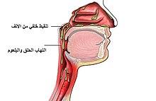 Postnasal Drip Syndrome Pnds Natural Remedy