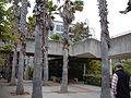 Primate Discovery Center at SF Zoo ground level 3.JPG