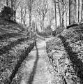 Processiepark, holle weg met klinkerbestrating - Simpelveld - 20329811 - RCE.jpg
