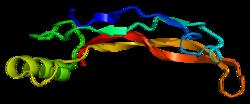 Proteino BMP4 PDB 1reu.png