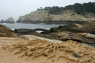 Point Lobos - Rocky coast at low tide