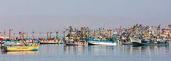 Puerto de Paracas, Perú, 2015-07-29, DD 12.JPG