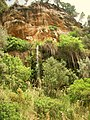 Puigpunyent natural park at Mallorca - panoramio.jpg