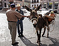 Pulque donkey and vendor.jpg