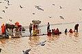 Pushkar (8043096035).jpg