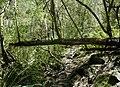 Quebrada de los Cuervos URUGUAY - panoramio (3).jpg