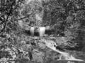 Queensland State Archives 440 Back Creek Beechmont November 1933.png
