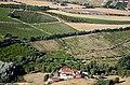 Quinta do Pé do Monte - Arredores do Miradouro do Moinho do Céu - Sabugos - Portugal (37214175025).jpg