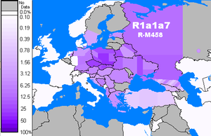 Haplogroup R1a - Frequency distribution of R-M458