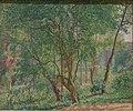 RAMM Gore - Panshanger Park.jpg