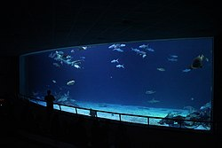 National Museum Of Marine Biology And