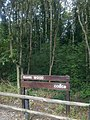 Rahin wood - panoramio.jpg