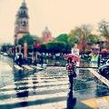 Rain (33036877).jpeg