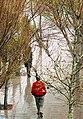 Rainy day of Tehran - 15 March 2013 09.jpg