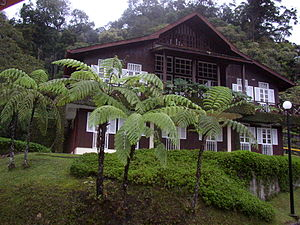 Kinabalu Park - Rajah Lodge accommodation with tree ferns in the foreground