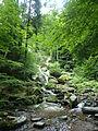 Rešovské vodopády2.JPG