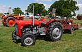 Red Massey Ferguson tractor at the Lamport Country Show.jpg
