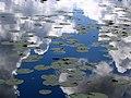 Reflection in Nabas lake - panoramio.jpg