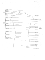 Richer - Anatomie artistique, 2 p. 86.png