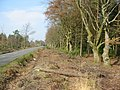 Ringwood to Alderholt Road Hampshire - geograph.org.uk - 137234.jpg