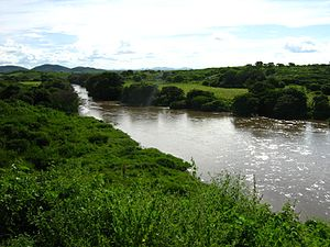 Pajeú River - The river in Ingazeira