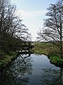 River Rother - geograph.org.uk - 1239698.jpg