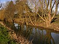 River Waveney near Earsham - geograph.org.uk - 730893.jpg