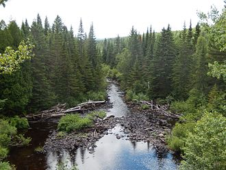 Saint Francis River (Canada–United States) - Saint Francis River from Petit-Témis