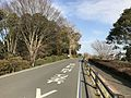 Road near Kitano Temman Shrine 20170203.jpg