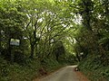 Road to Efford Fort - geograph.org.uk - 1524498.jpg