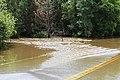 Roman Forest Flood, 4-19-16 at 2-30 PM (26436982402).jpg