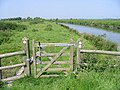 Route of Saxon Shore Way ahead - geograph.org.uk - 457178.jpg