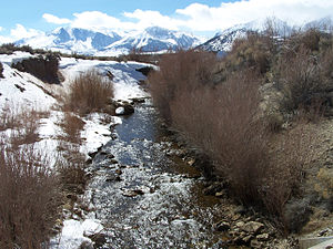 Rush Creek (Mono County, California) - Deep channel incision on Rush Creek due to lowering of Mono Lake. Photo by Greg Reis, courtesy of the Mono Lake Committee