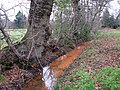 Rust-coloured water - geograph.org.uk - 1099889.jpg