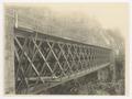 SBB Historic - 110 133 - Robasaccobrücke.tif