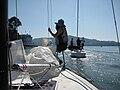 Sailing Belvedere CA.jpg