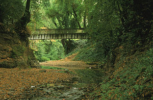 San Anselmo Creek - Sais Footbridge over San Anselmo Creek in the dry season of 1997, courtesy of Charles Kennard, Friends of Corte Madera Creek